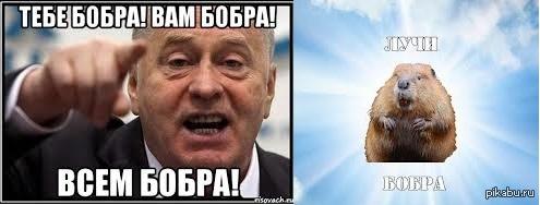 http://s7.pikabu.ru/post_img/2014/02/11/7/1392114973_504648151.jpg