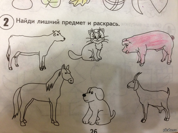 http://s7.pikabu.ru/post_img/2014/02/11/8/1392120063_1815893162.JPG