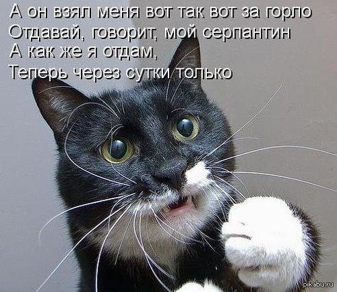http://s7.pikabu.ru/post_img/2014/06/29/10/1404058689_1010560053.jpg