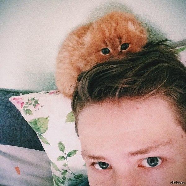 У меня было много постов с животными, а теперь у меня есть свой кот! кот, моё, милота, доброта