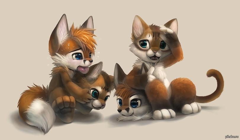 фурри лисицы и коты